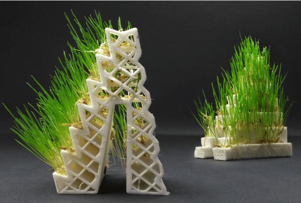 GrowLay Filament von LayFilaments
